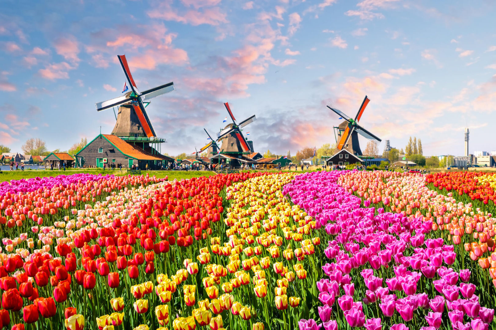 Payroll and HR in the Netherlands